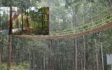 ඉන්දියාවේ උත්තරඛන්ද් ප්රාන්තයේ කඳුකර ප්රදේශයක පිහිටි පරිසරයට හිතකර පාලම (Eco Bridge)